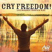 Cry Freedom: Live Worship from New Wine by The New Wine