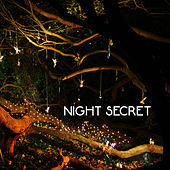 Night Secret by Various Artists