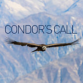 Condor's Call by Various Artists