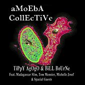 Play & Download Amoeba Collective by Bill Bourne | Napster