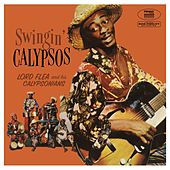 Swingin' Calypso by Lord Flea
