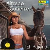 Play & Download El Pajonal by Alfredo Gutierrez | Napster