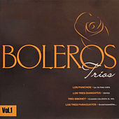 Play & Download Boleros Tríos, Vol. 1 by Various Artists | Napster