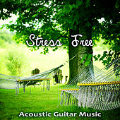 Play & Download Stress Free – Afternoon Acoustic Guitar Music for Stress Relief, Totally Relaxing Evening Chill, Songs to Calm and Overcome Anxiety, Relaxation Jazz Music by Various Artists | Napster
