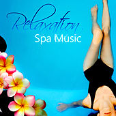 Relaxation Spa Music - Wellness Music for Massage, Mindfulness Meditation, Sounds to Relax, Stress Relief, Calming Sounds for Serenity, Reduce Stress, Brainwave Symphony, Well Being by Healing Therapy Music