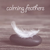 Play & Download Calming Feathers by Various Artists | Napster