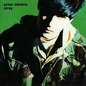 Play & Download Stray by Aztec Camera | Napster