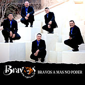 Play & Download Bravos a Mas No Poder by Bravos De Ojinaga | Napster
