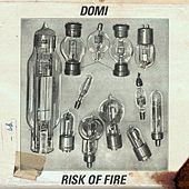 Play & Download Risk of Fire by Domi | Napster