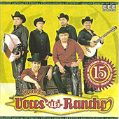 Play & Download 15 Exitos Pesados by Voces Del Rancho | Napster