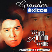 Play & Download Cantandole a Venezuela by Marco Antonio Muñiz | Napster
