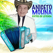 Play & Download Éxitos de Leyenda by Aniceto Molina | Napster