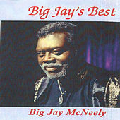 Play & Download Big Jay's Best by Big Jay McNeely | Napster