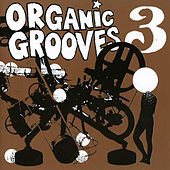 Play & Download Organic Grooves 3 by Organic Grooves | Napster