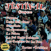 Play & Download Festival Grupero by Various Artists | Napster