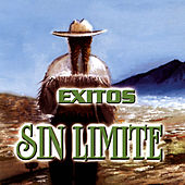 Exitos Sin Limite by Various Artists