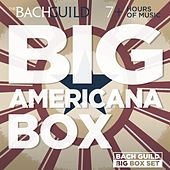 Play & Download Big Americana Box by Various Artists | Napster