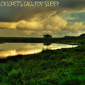 Play & Download Cricket's Call for Sleep by Various Artists | Napster