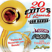Play & Download 20 Exitos del Recuerdo - Con Banda by Various Artists | Napster