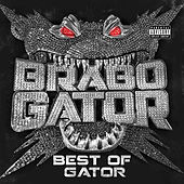 Best of Gator by Brabo Gator