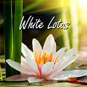 White Lotus by Various Artists