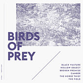 Birds of Prey by BIRDS OF PREY