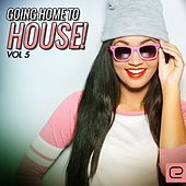 Going Home To House, Vol. 5 - EP by Various Artists