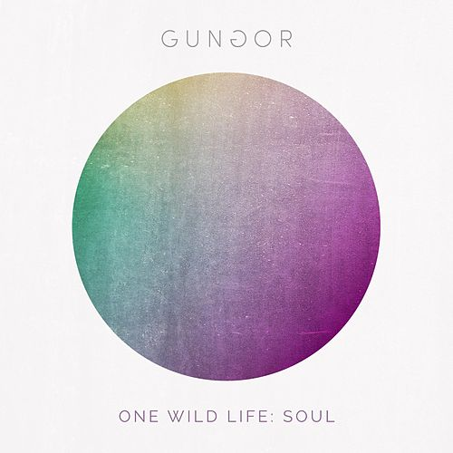 Play & Download One Wild Life: Soul by Gungor | Napster
