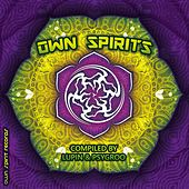 Play & Download Own Spirits - EP by Various Artists | Napster