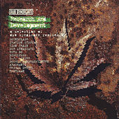 Research And Development by Dub Syndicate