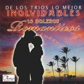 Play & Download De los Trios Lo Mejor Inolvidables by Various Artists | Napster