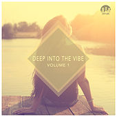 Play & Download Deep Into the Vibe, Vol. 1 by Various Artists | Napster
