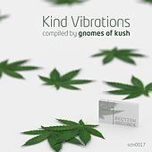 Kind Vibrations by Various Artists