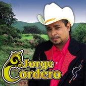 Que de Raro Tiene by Jorge Cordero