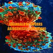 Play & Download Abiogenesis 2 (Evolution) - Single by Shambala Networks | Napster