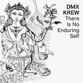 Play & Download There Is No Enduring Self by DMX Krew | Napster