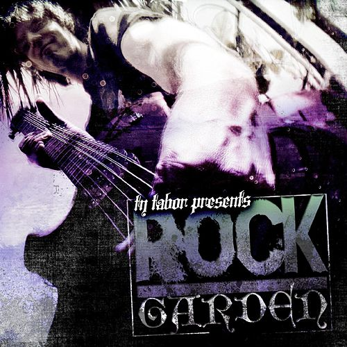 Play & Download Rock Garden by Ty Tabor | Napster