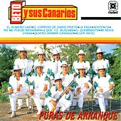 Play & Download Puras de Arranque by Beto Y Sus Canarios | Napster