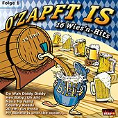 O' zapft is - 16 Wies'n Hits by Various Artists