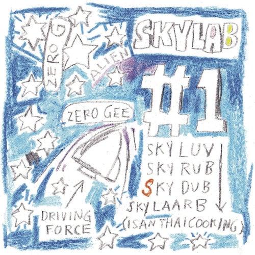 #1 by SkyLab