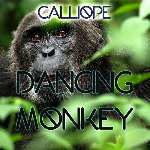 Dancing Monkey by Calliope