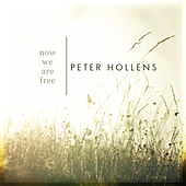 Now We Are Free by Peter Hollens