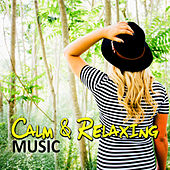 Calm & Relaxing Music - Soothing Music for Reduce Stress, Meditation, Good Mood, Sentimental Journey, Relaxation Music on Everyday, Cool Music by Various Artists