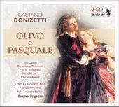 Donizetti, G.: Olivo e Pasquale by Mario Chiappi