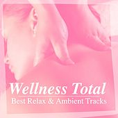 Play & Download Wellness Total Best Relax & Ambient Tracks by Various Artists | Napster