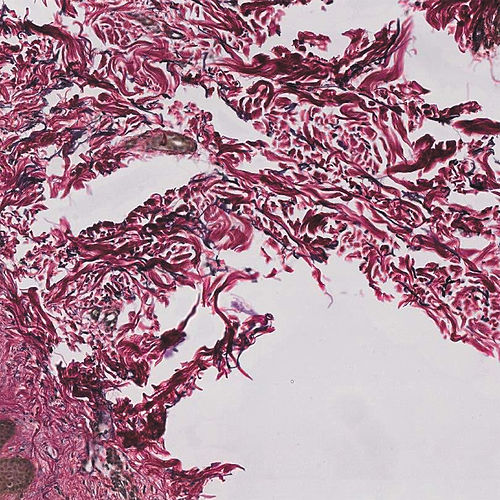 Play & Download Sorry My Love, It's You Not Me by Ghostpoet | Napster