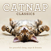 Play & Download Catnap Classics: For Peaceful Sleep, Naps & Dreams by Various Artists | Napster