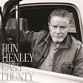 That Old Flame by Don Henley