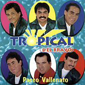 Play & Download Paseo Vallenato by Tropical Del Bravo | Napster