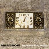 Aqua Necromancer by Merzbow